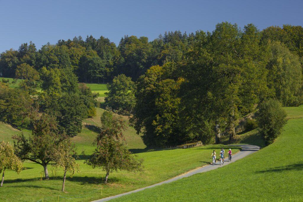 Schwarzsee FB